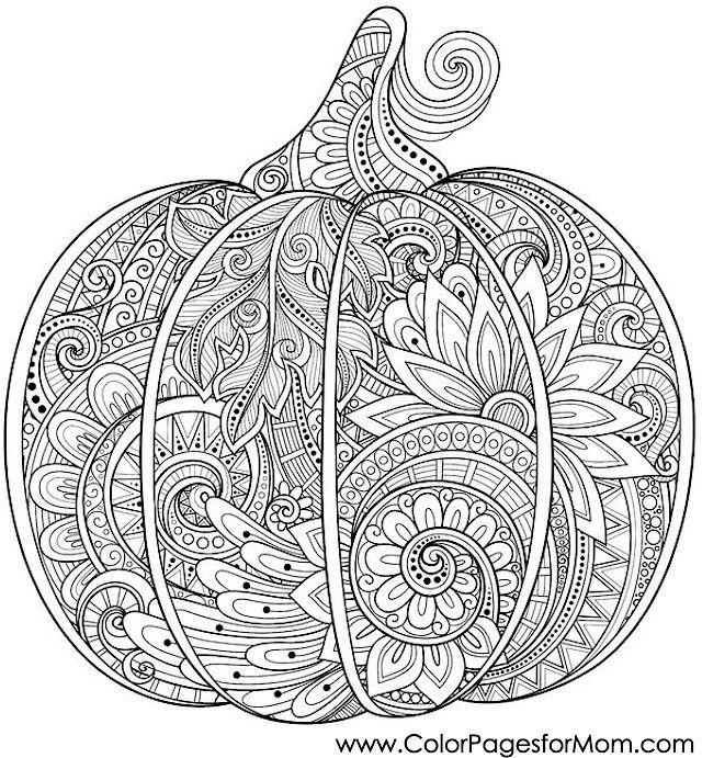 pumpkin and halloween pumpkins on