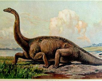 1000 Images About Vintage Dinosaurs On Pinterest