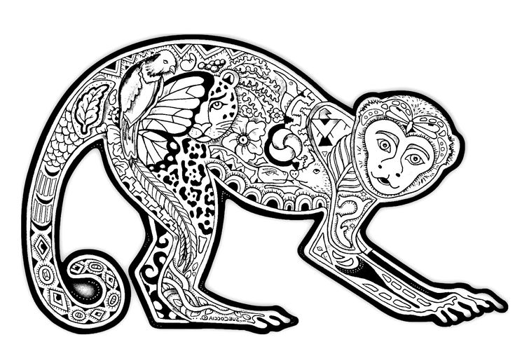 coloring page coloring difficult monkey a coloring page with a monkey