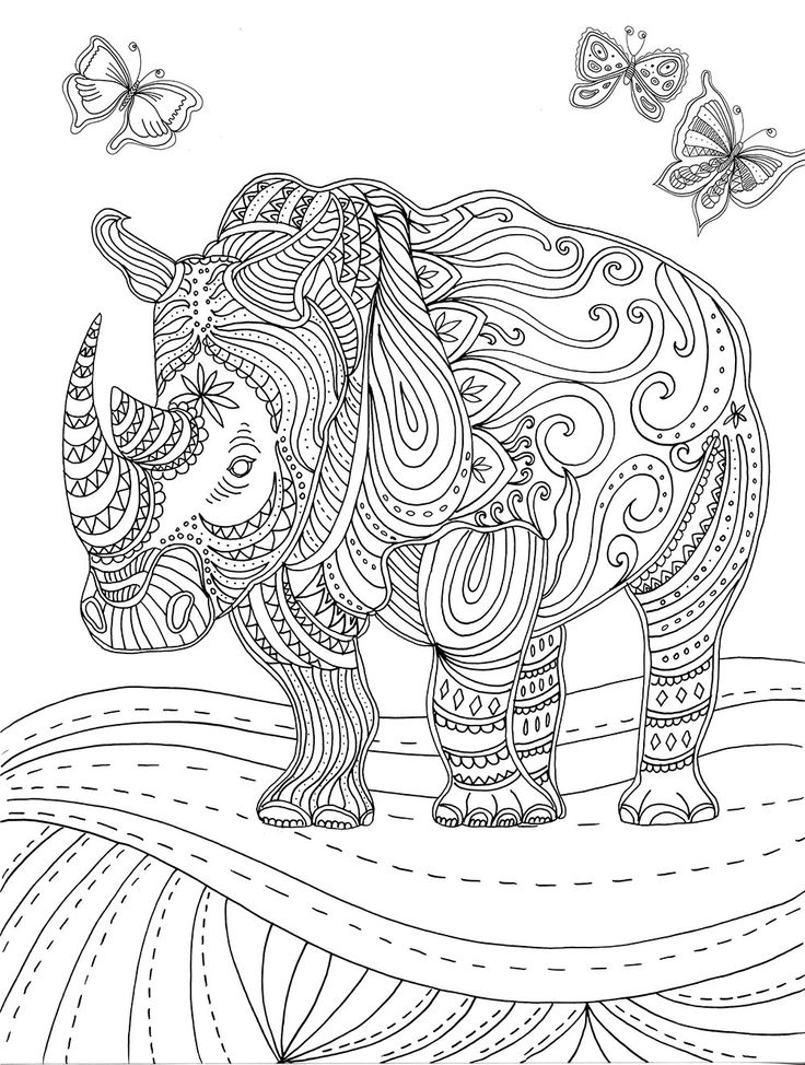 rhinoceros colouring pages and rhinos on pinterest