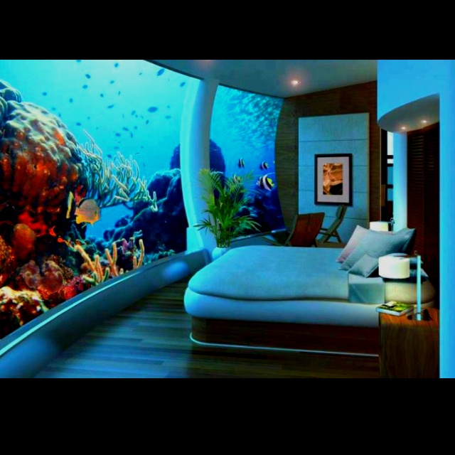 1000 Images About Fish Tank On Pinterest Cichlids Atlantis And. Bedroom With Fish Tank Walls   Bedroom Style Ideas