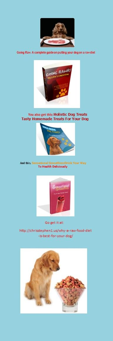 Why A Raw Food Diet Is Best For Your Dog #dog food #raw dog food
