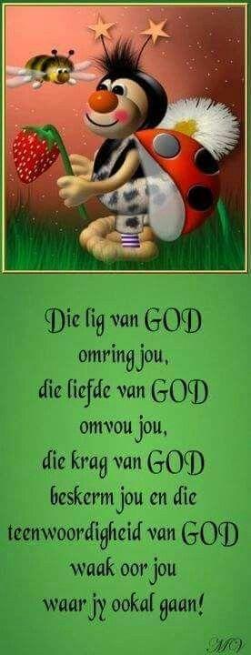 Die Lig Van God Afrikaans Pinterest Vans And Afrikaans