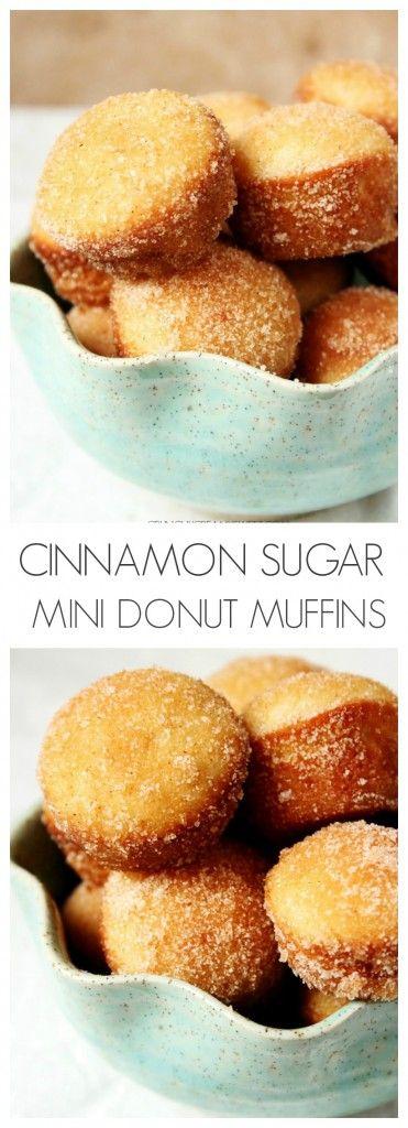 Cinnamon Sugar Mini Donut Muffins – little gems that look like muffins but taste like your favorite cinnamon donuts!