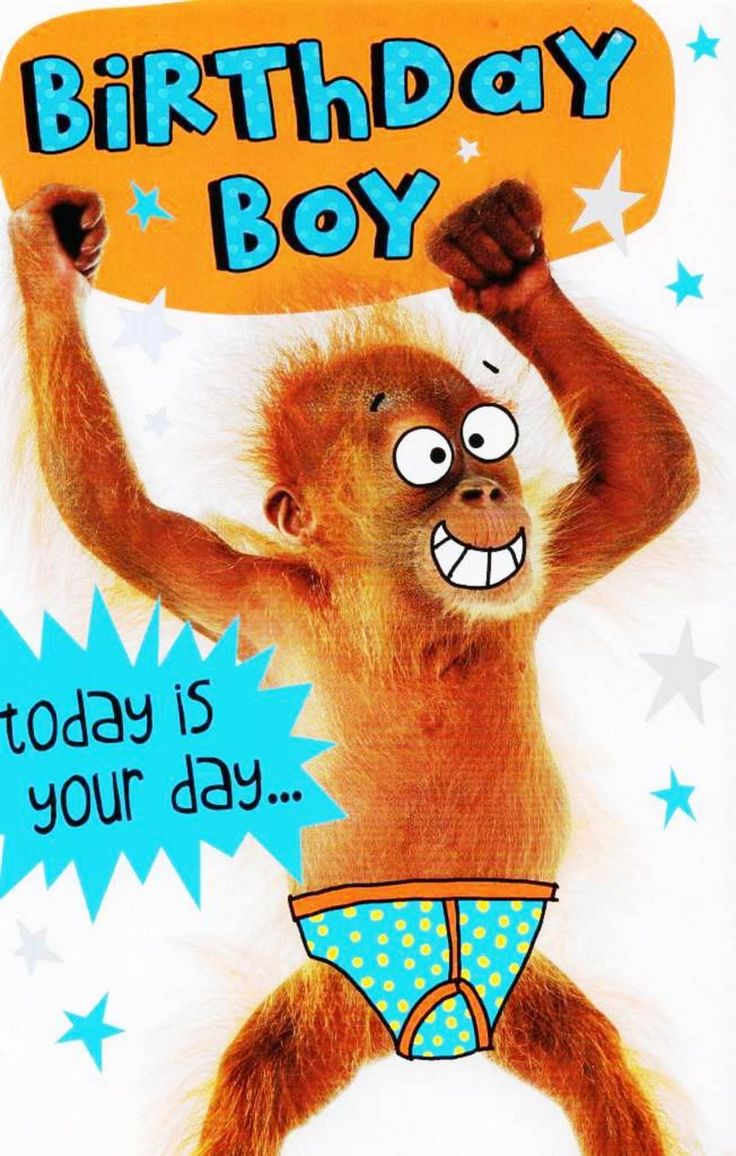 Birthday Boy today is your day... to go Bananas! Cards