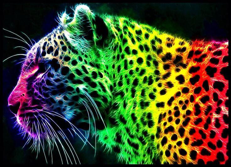 Colorful Rainbow Tiger Graphic Design Art Picture