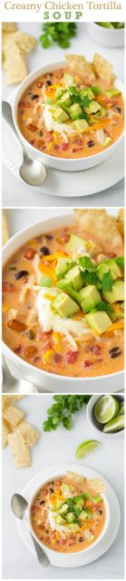 Creamy Chicken Tortilla Soup - this soup is seriously delicious!! Hearty and comforting also GF.: