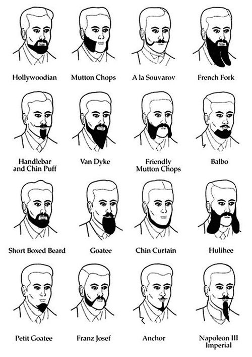 Different Types Of The Head And Style On Pinterest