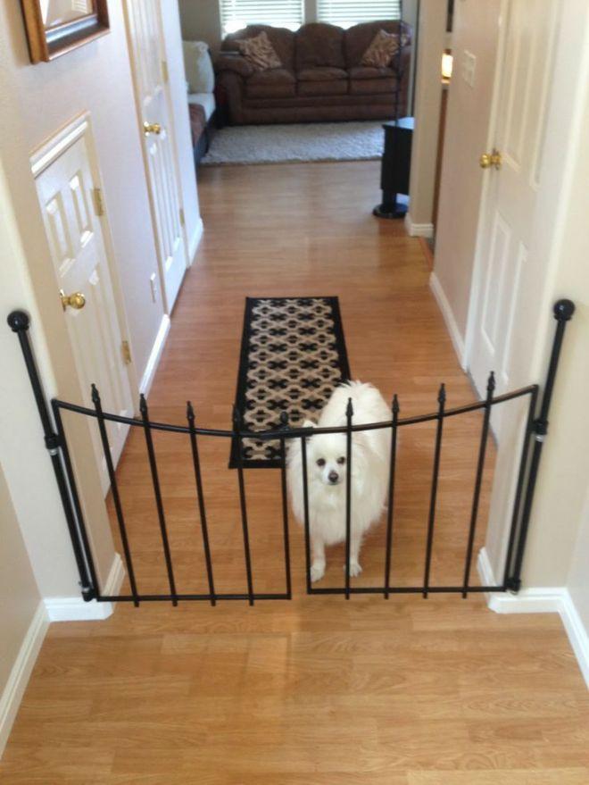Diy pet gate for the home pinterest pet gate pets