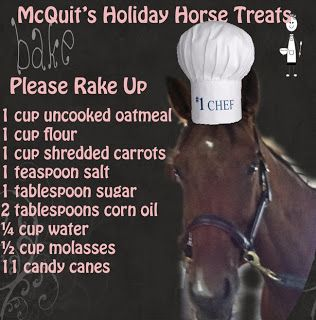 McQuits Holiday Horse Treats. How many does this serve? Thats a LOT of candy canes