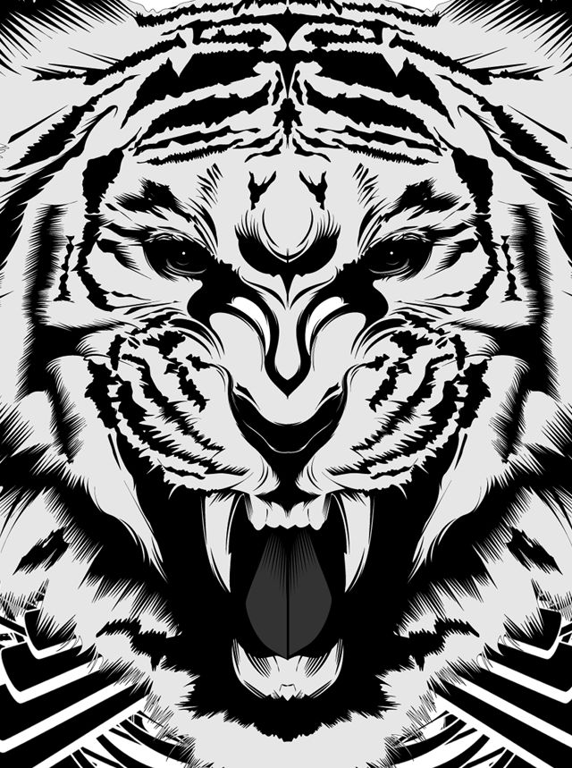 tiger vector illustration, fierce. illustrated by inocuo