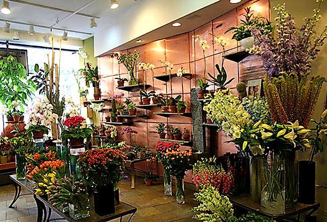 magical shops Flower shop interior design in a New York