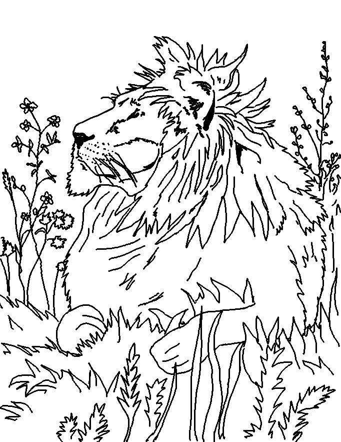 9 best images about free coloring pages on pinterest