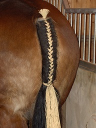 23 Best Images About ManeTail Braids On Pinterest