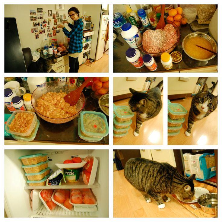 Easy Homemade Cat Food using ground chicken vitamins