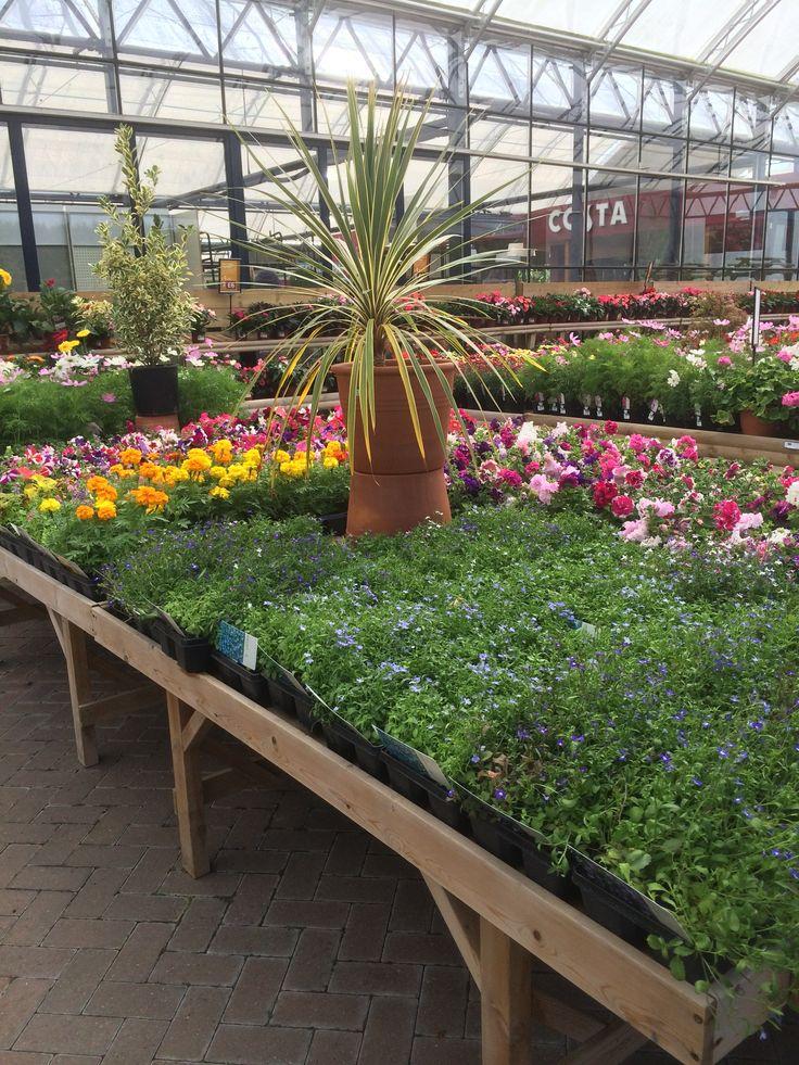 Garden & Leisure Company Huntingdon Garden Centre