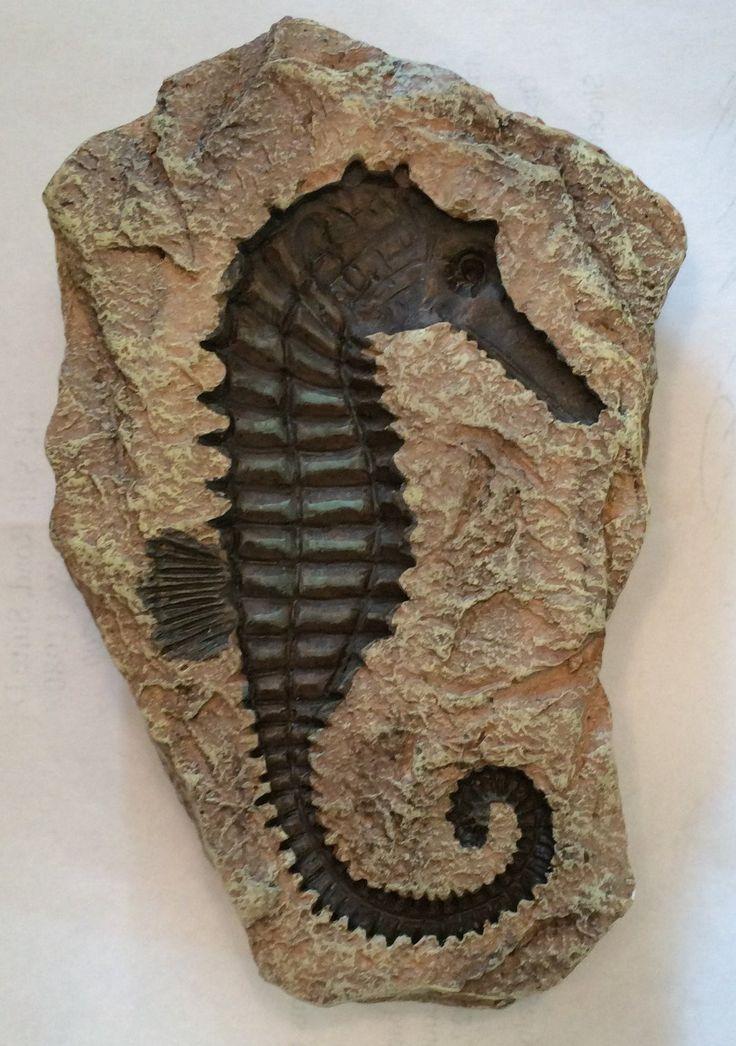 Seahorse Replica Fossil Rock Garden Statue Stuff To Buy
