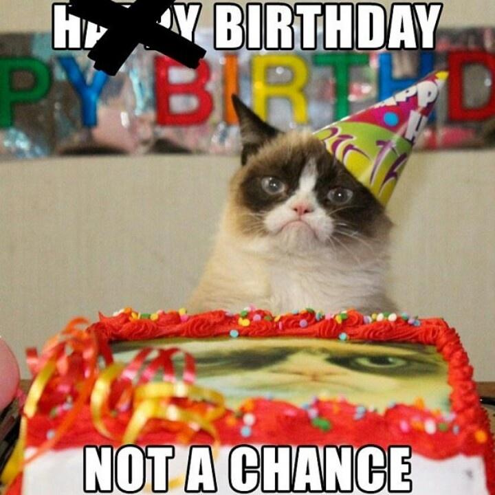 My birthday this year Cat Pinterest My birthday and