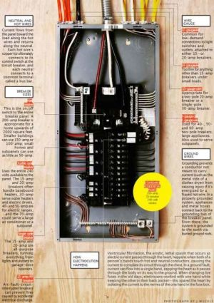It's Electric! How Your Circuit Breaker Panel Works | Electric and Boxes