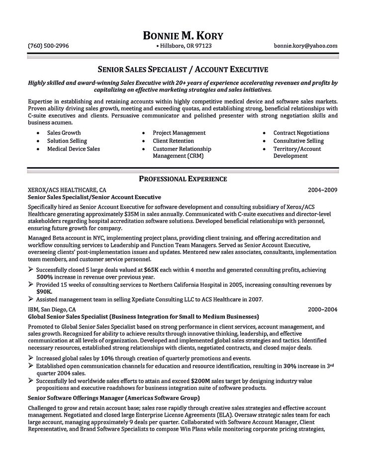 executive resume resumebusiness account executive resume sample senior