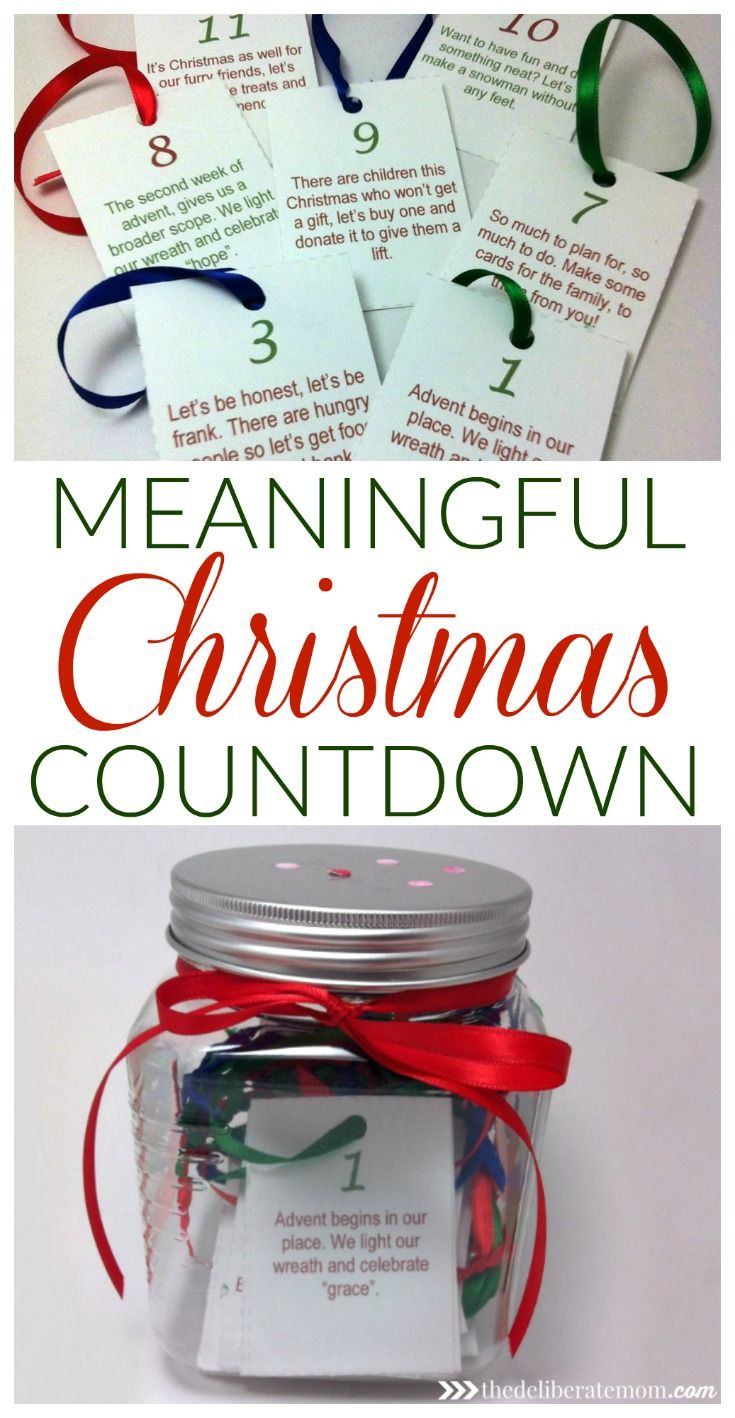 A Meaningful Christmas Countdown Cat food, Animal