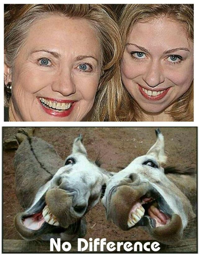 Image result for cartoon of chelsea clinton in curlers