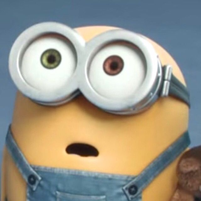 33 Best Images About Bob The Minion On Pinterest Theater