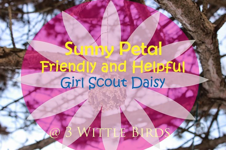 Girl Scout Daisy Meeting Sunny Petal Friendly And Helpful