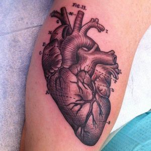 17 Best ideas about Anatomical Tattoos on Pinterest