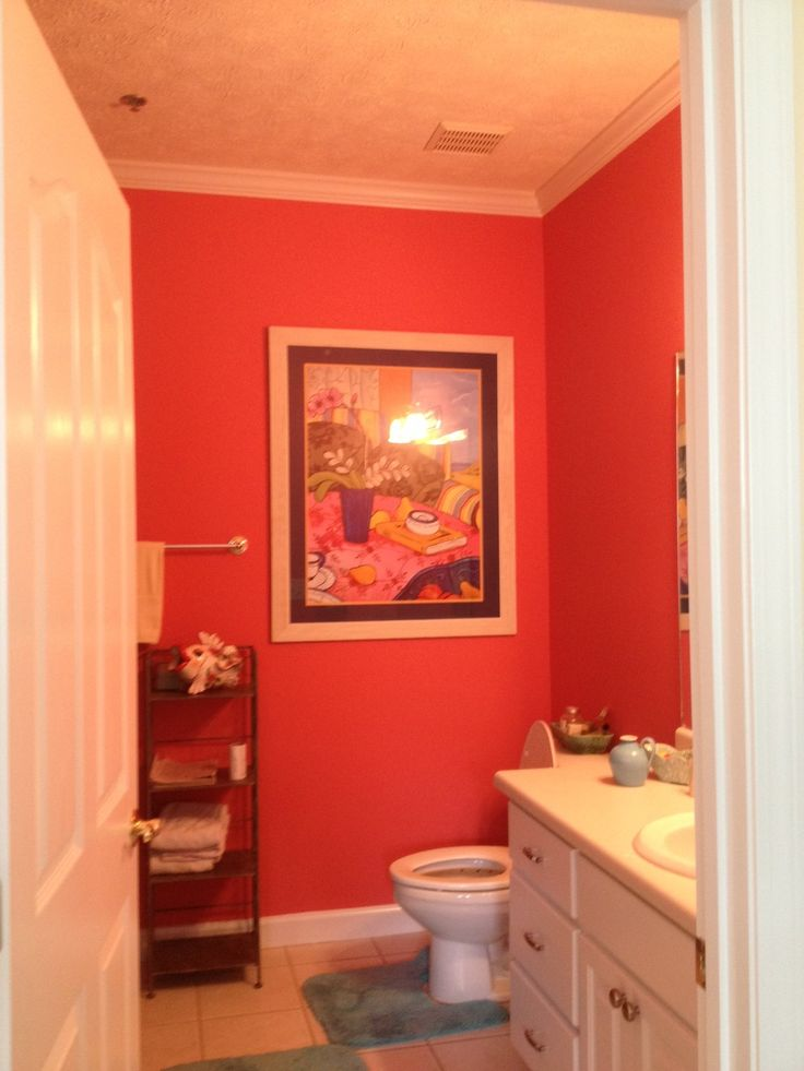 Sherwin Williams SW 6599 Begonia Color For The Home