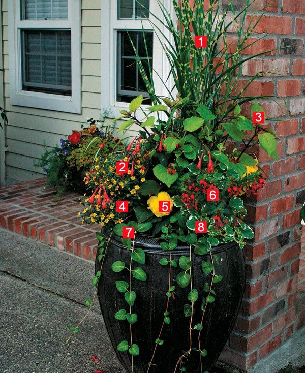 Stylish Shady Containers many different types of