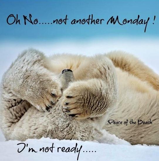 Boo to mondays Humour Pinterest Mondays