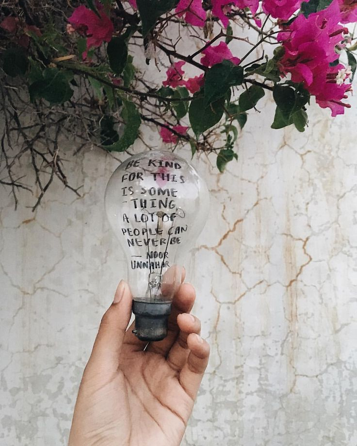 kindness // an old poetry piece on an even older bulb by