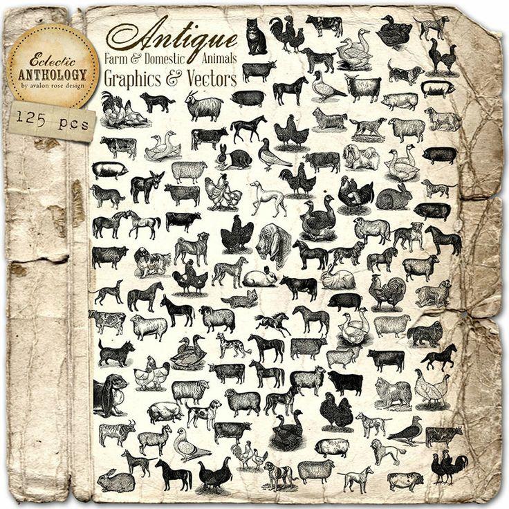 Antique Farm and Domestic Animals Graphics and Vectors