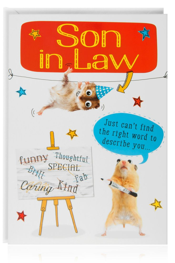 Details about son in law birthday funny humour joke card