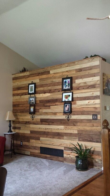 Beetle Kill Pine Accent Wall For The Home Pinterest