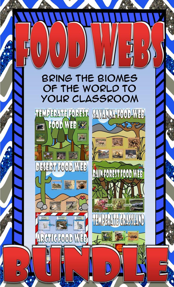 Food Chain and Food Web Biome Card Sort Bundle Food