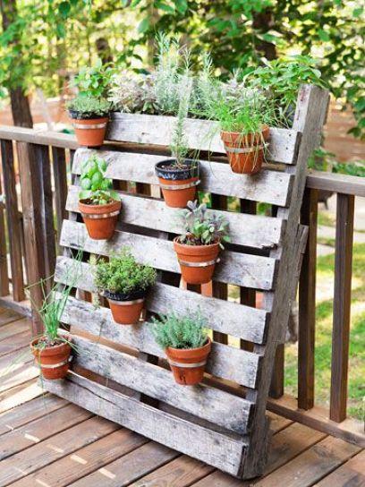 Rosmarino, basilico, timo, salvia, origano, prezzemolo; tutte queste erbe possono essere piantate in un contenitore e vi daranno grandi soddisfazioni