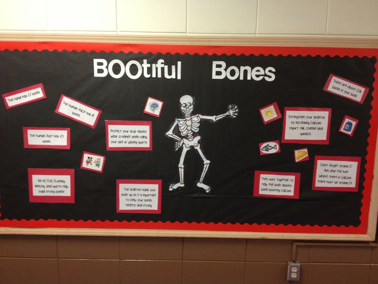 17 Best Images About Bulletin Board Ideas On Pinterest