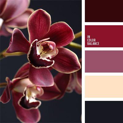 The color palette number 906  beige, burgundy, graphite gray, reddish-purple, cream, deep pink color combination for interior