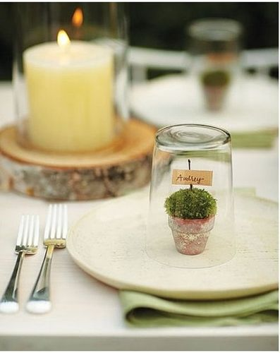plant place setting creative decor diy