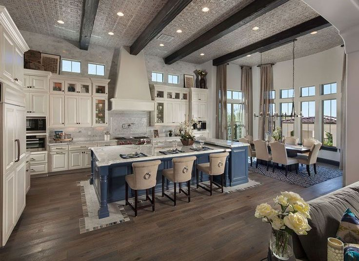 Luxury Open Concept Kitchen