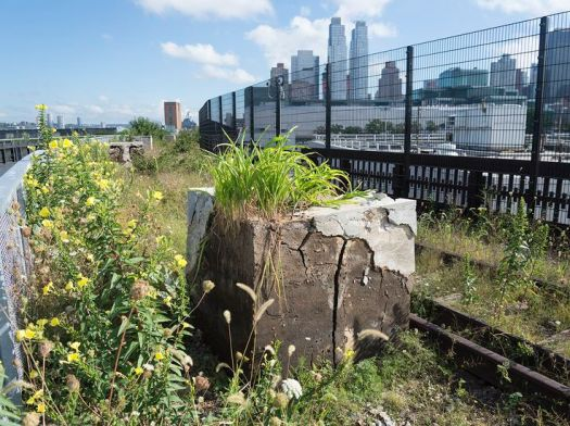 「New York City's Highline Park, Before and After. Source: http://www.telegraph.co.uk」の画像検索結果