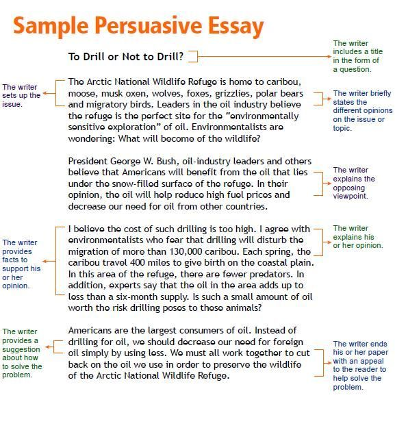Interview Essay Paper  Gerdontv Interview Essay Paperjpg