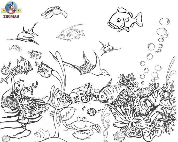 sea world coloring pages and coloring on pinterest