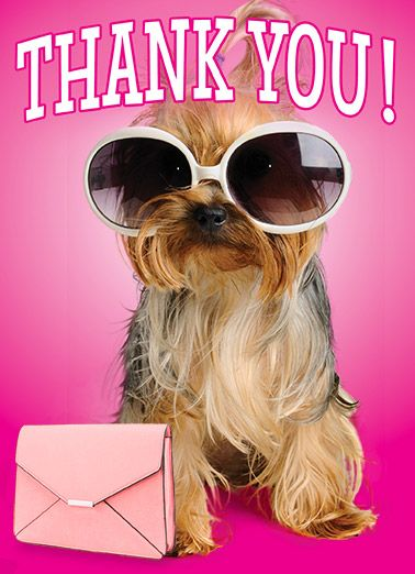 11 Best Images About Say Thank You On Pinterest Funny