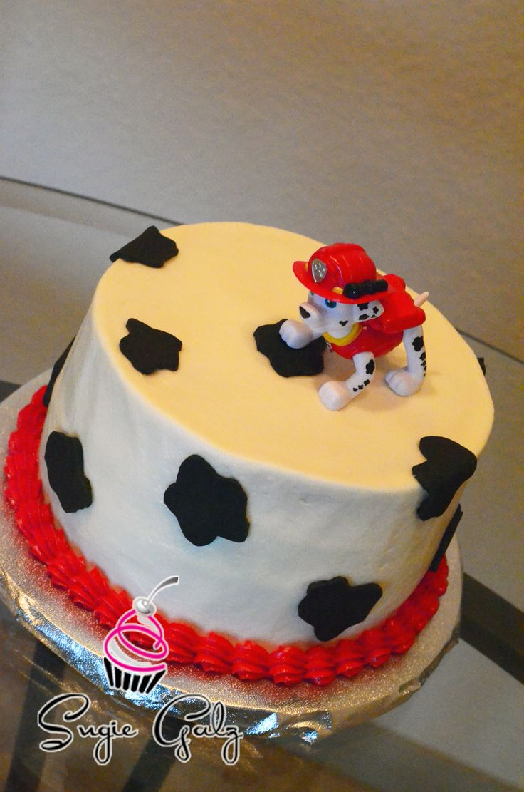 Paw Patrol First Birthday Smash Cake By Sugie Galz In