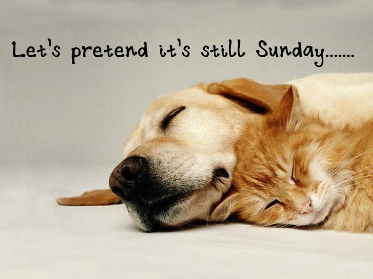 Let's pretend it's still still Sunday (Mondayitis