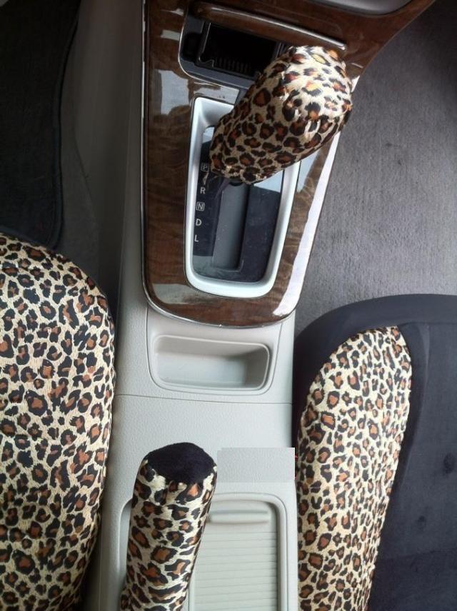 Cheetah Gear Shifts Girly Car Pinterest Cheetahs