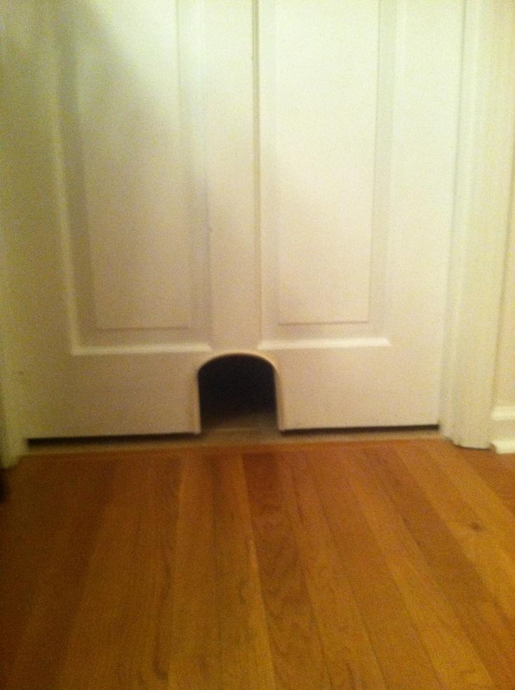 Cat door Basement Ideas Pinterest Doors, We and Cats